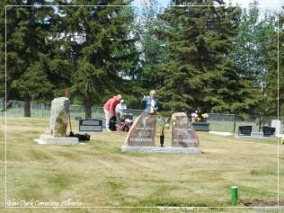 Glen Park Cemetery Maint 2016-1